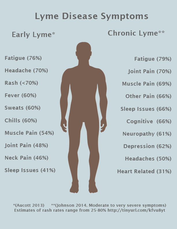 Symptoms of Lyme Disease | LymeDisease.org