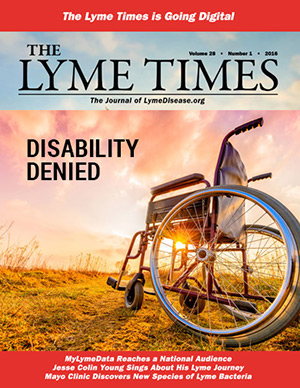 Lyme Times Summer Issue