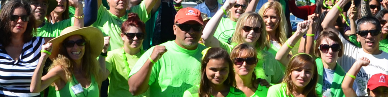 Lyme disease LymeWalk Fundraising