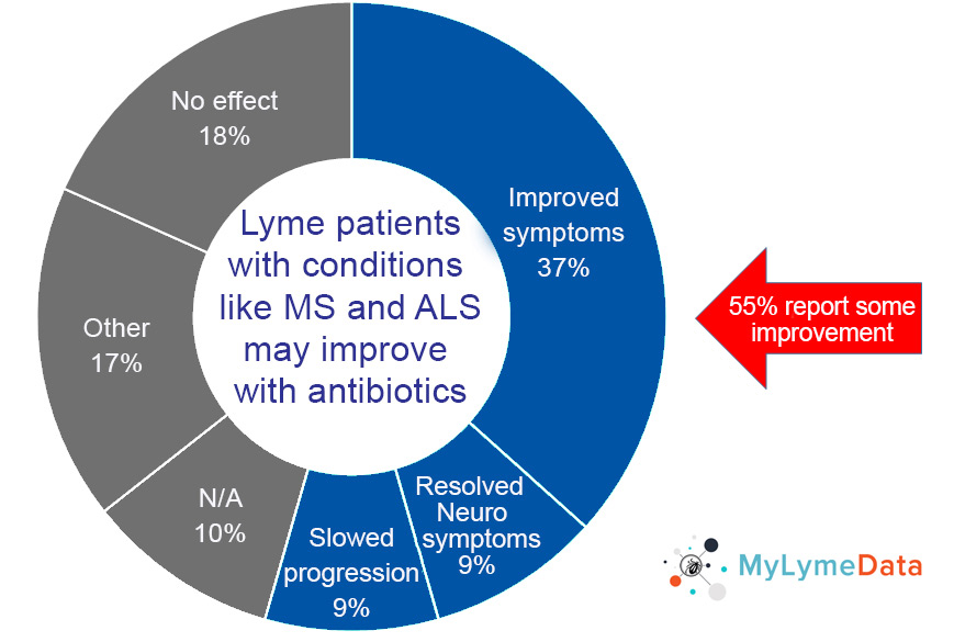 ms lyme disease - patients may improve with antibiotics