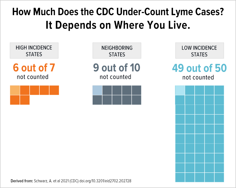 How much does the CDC undercount Lyme cases? It depends on where you live.