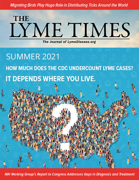 Lyme Times Summer 2021 Issue