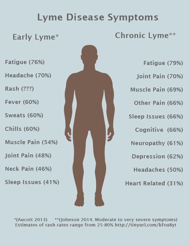 Image result for image of Post-Lyme Disease Syndrome