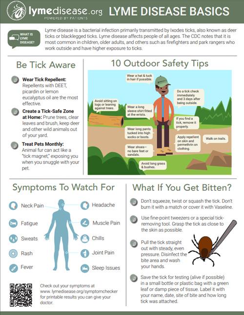 Lyme Disease Basics Poster