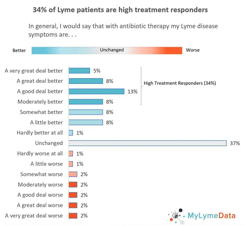 Lyme disease treatment super responders