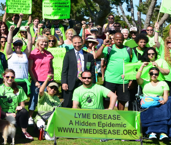 Organize a Lymewalk