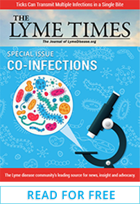 LymeTimes Co-infection Special Issue