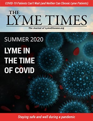 Lyme Times Summer 2020 Issue