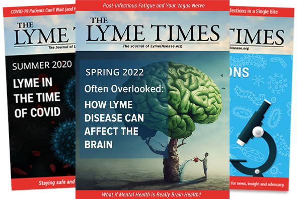 View the LymeTimes