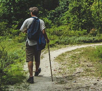 A case of a patient who as a hiker but had no known tick contact died of Lyme carditis.