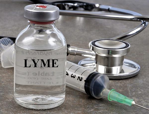 lyme disease vaccine