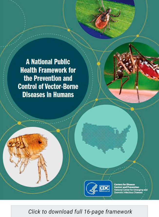 The Kay Hagan Tick Act adopts a national strategy for Lyme disease