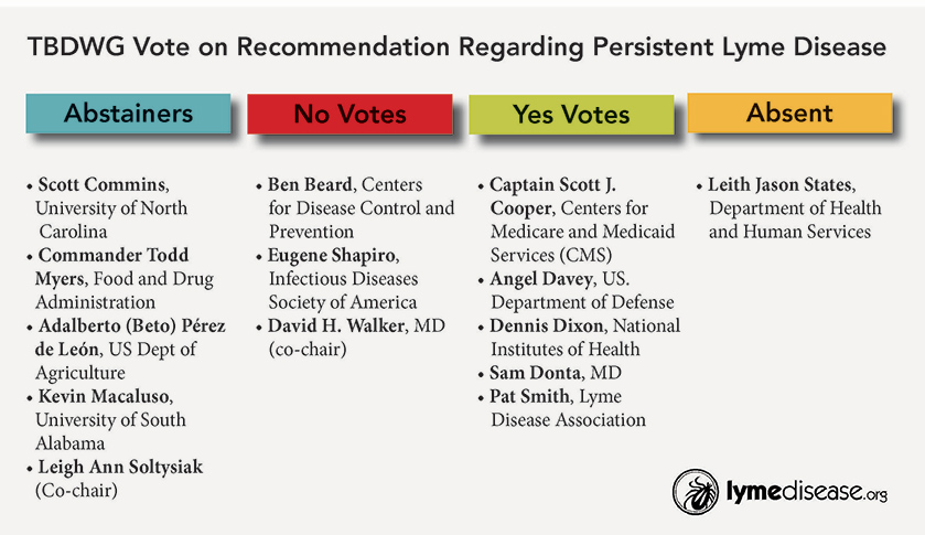 Votes on recommendation regarding persistent Lyme disease