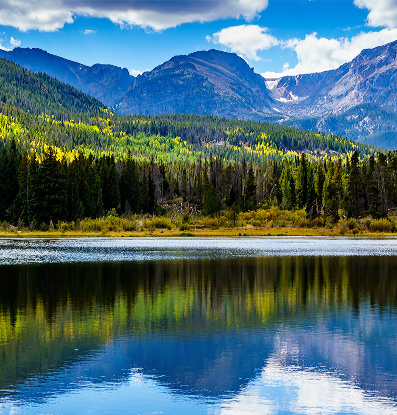 Elevating Tick Awareness in Colorado