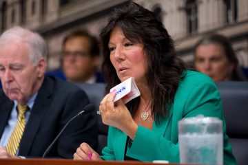 Hearing on Lyme Disease New York Senator Sue Serino