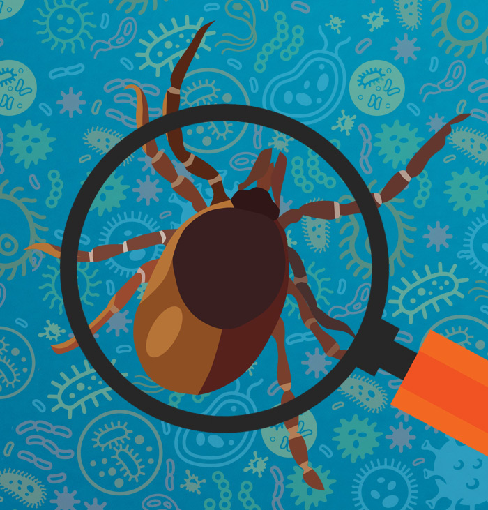 Developing New Tests to Identify Tick-Borne Pathogens