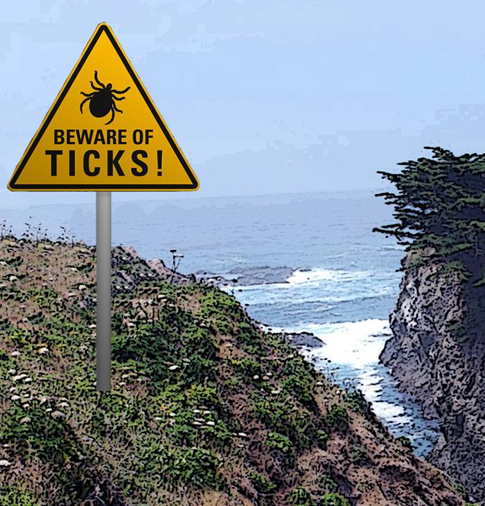 Tick-Borne Diseases: A Big Problem in California