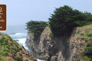 Lyme disease a big problem in California