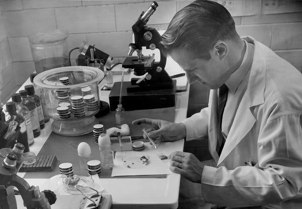 Willy Burgdorfer, discoverer of microbe causing Lyme disease. Biological Warfare?