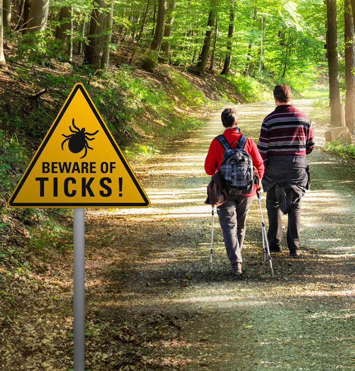 Venturing out? Watch for ticks