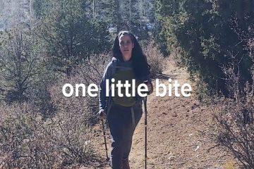 Lyme Video -,One Little Bite