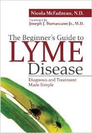 beginner's guide to Lyme cover