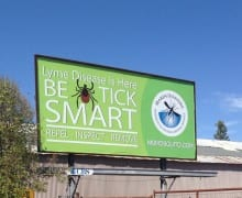 billboard marin copy