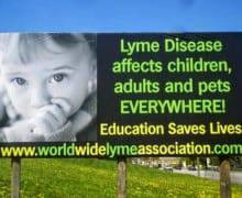 billboard.10339096_707535692644696_926824681_n