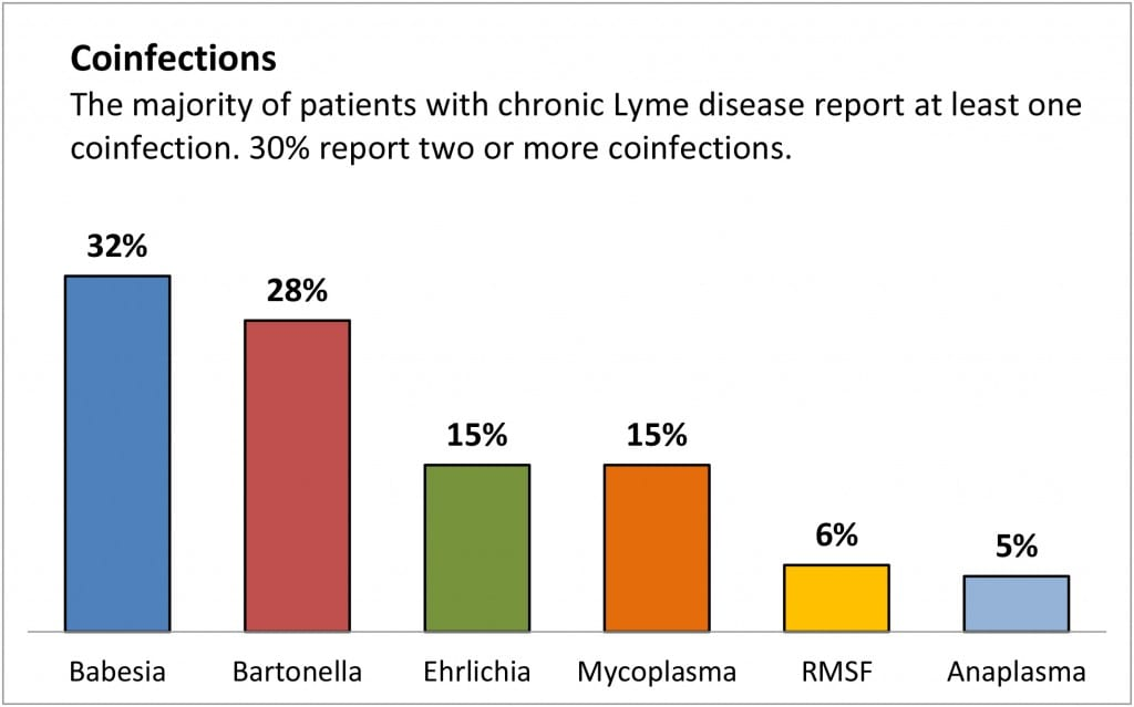 Lyme Disease Co-Infections | LymeDisease org