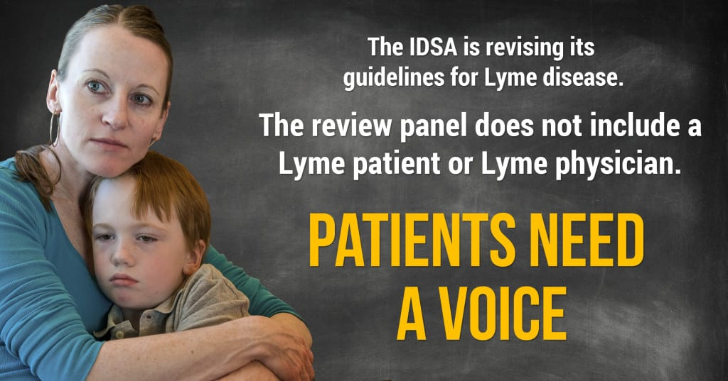IDSA Lyme guidelines page image