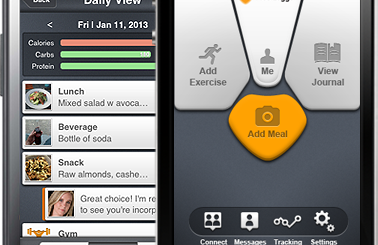 Meal-Logger-378x245