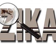 Zika png-50%