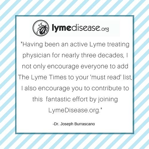 Lyme Times