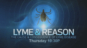 a research on lyme disease causes and effects Get information, facts, and pictures about lyme disease at encyclopediacom make research projects and school reports about lyme disease easy with credible articles from our free, online encyclopedia and dictionary.
