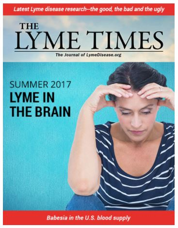 The latest issue of the Lyme Times is out, read now. Become a member.
