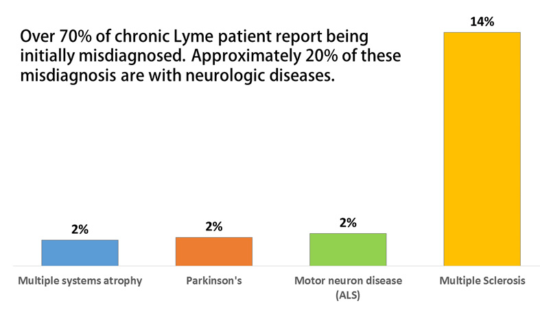 Do antibiotics help patients with Lyme disease who are also diagnosed with MS?