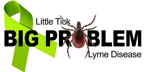 NE Ohio Lyme Foundation