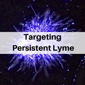Targeting persistent Lyme