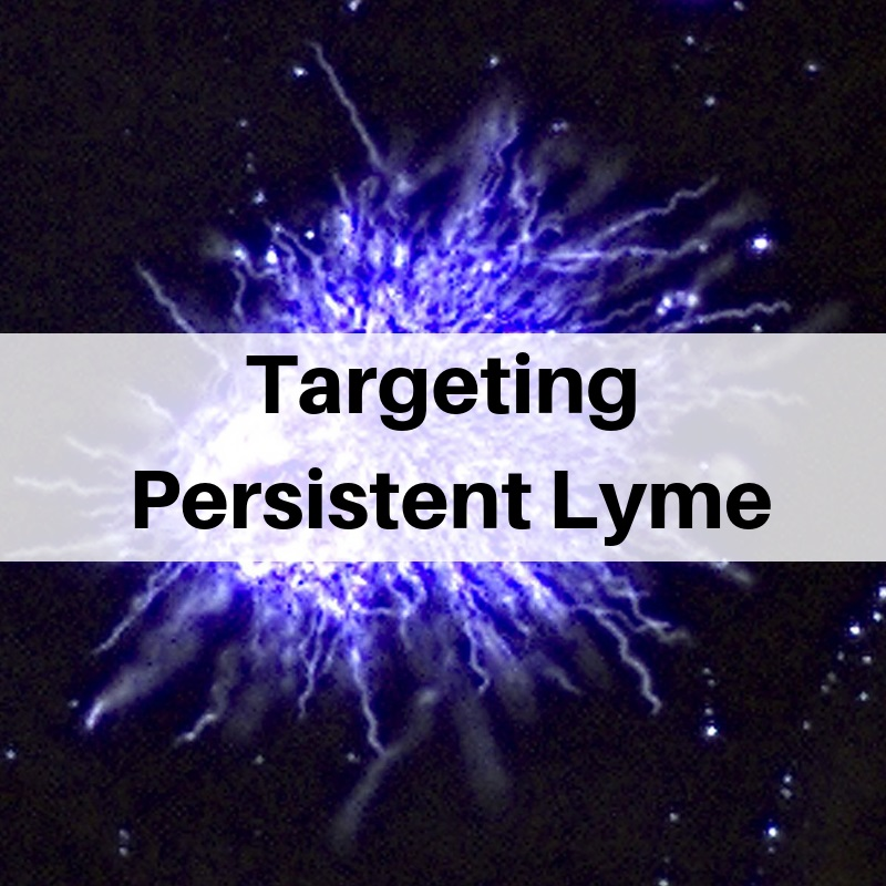 Targeting persistent Lyme