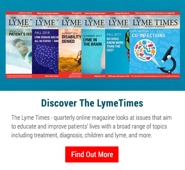 Discover The Lyme Times