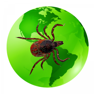worldwide ticks