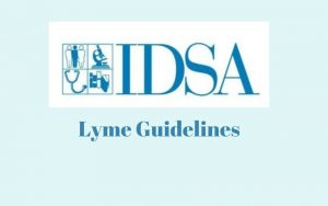 comments to IDSA Lyme guidelines