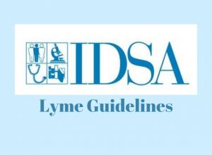 idsa lyme guidelines comments