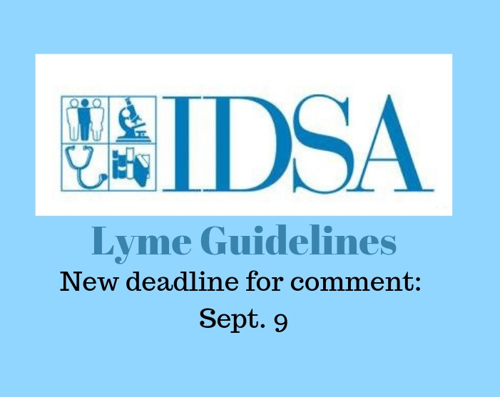 Commenting on IDSA Lyme guidelines