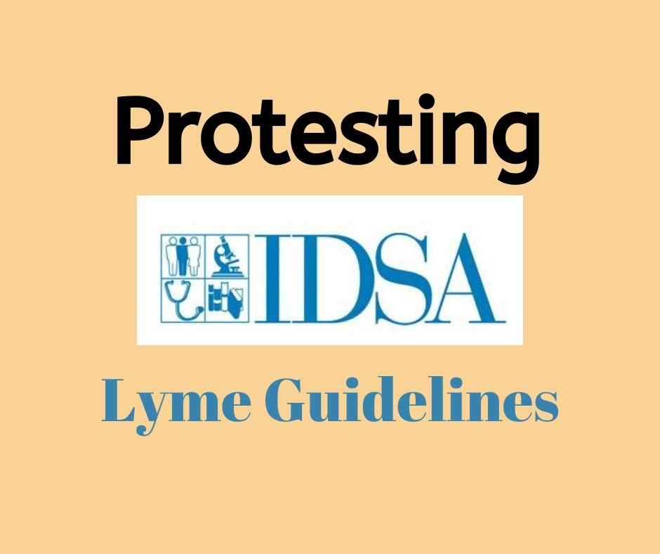 czechia joins ad hoc coalition to protest idsa lyme guidelines