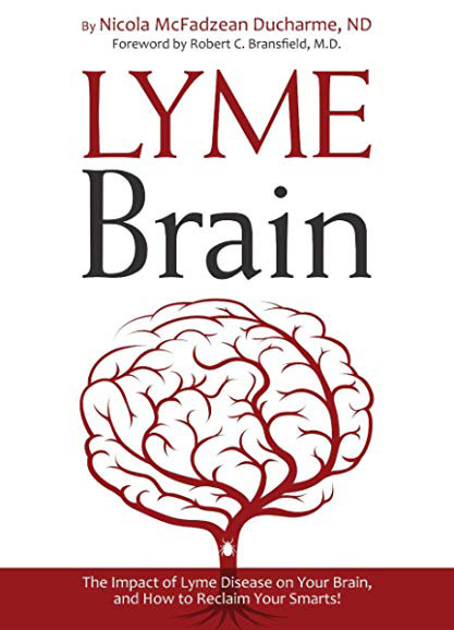 lyme disease in the brain