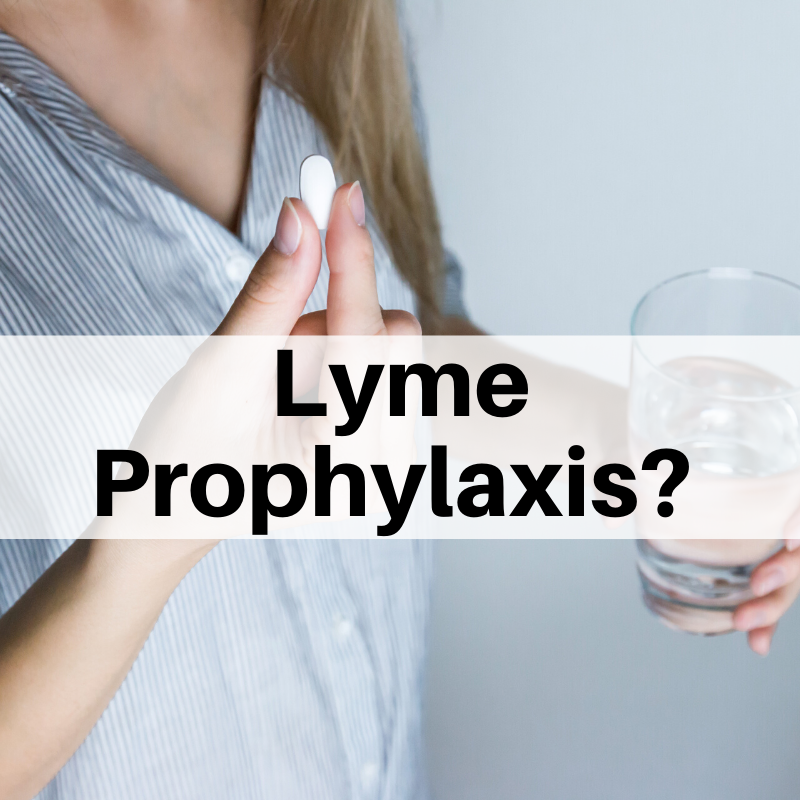 Lyme prophylaxis