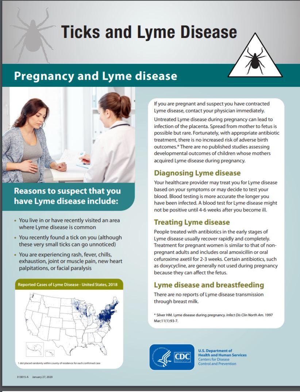 CDC pregnancy & Lyme