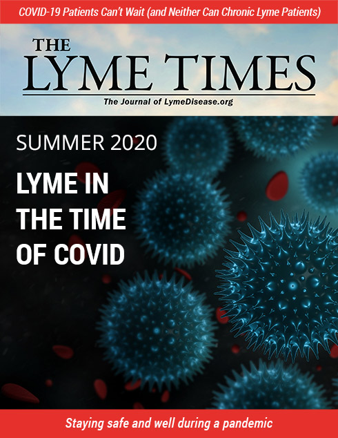 Lyme Times Sum 2020