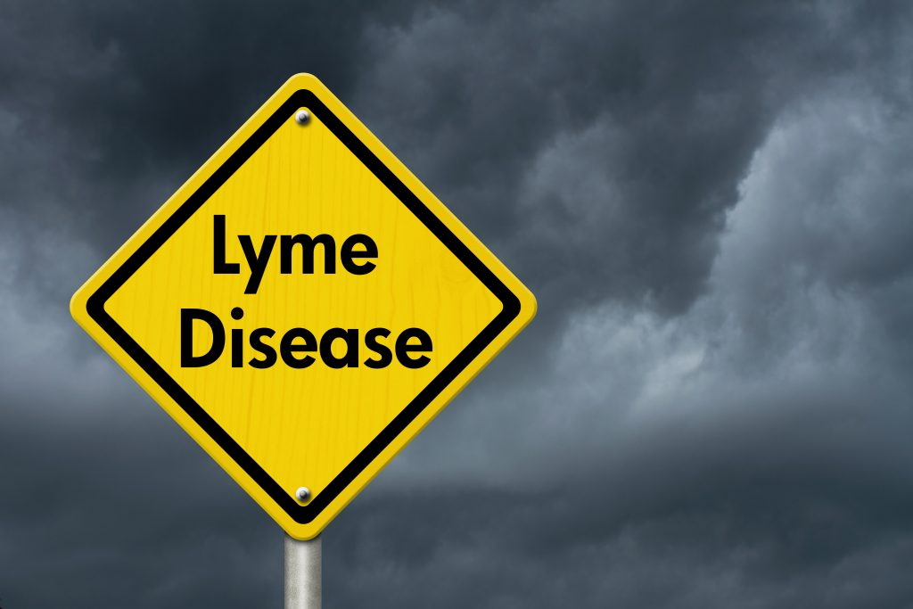 Lyme disease warning